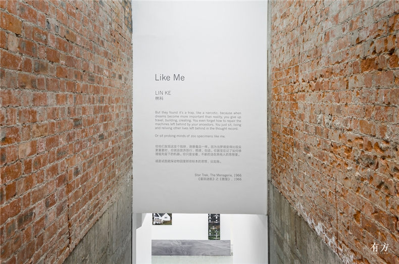 LIN KE Like Me Installation View 00