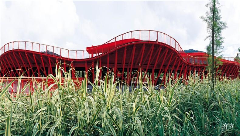 05 东部华侨城湿地公园