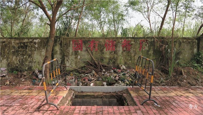 shijian 深圳湾 超级总部基地 珠三角 shenzhenbay youfang 2