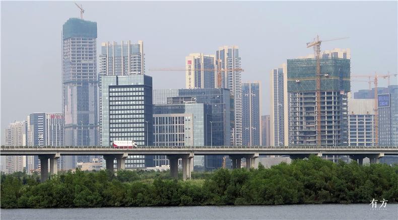 shijian 深圳湾 超级总部基地 珠三角 shenzhenbay youfang 7