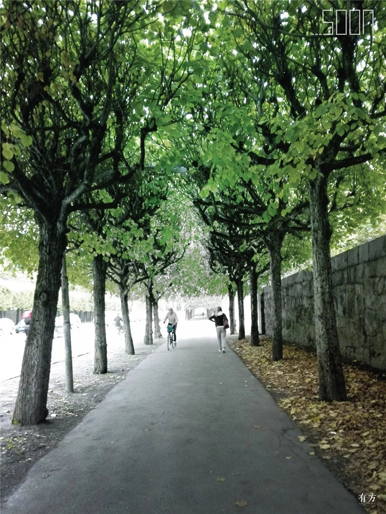0斯德哥尔摩林地公墓05