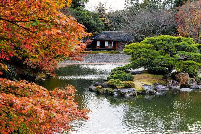 0日本之美庭园之心05
