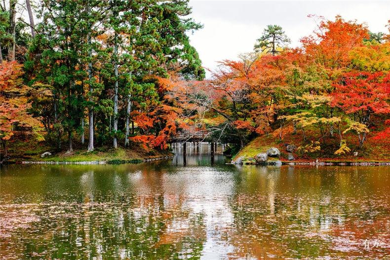 0日本之美庭园之心06
