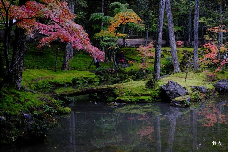 0日本之美庭园之心07