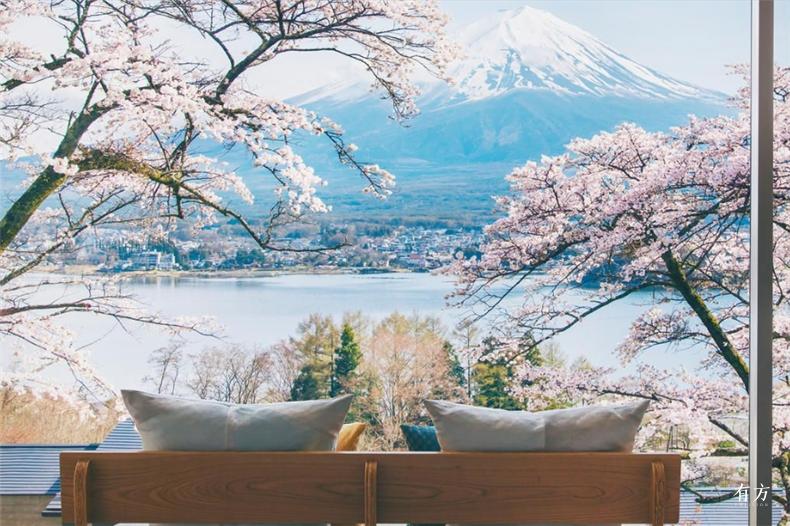 0日本赏樱必住酒店19