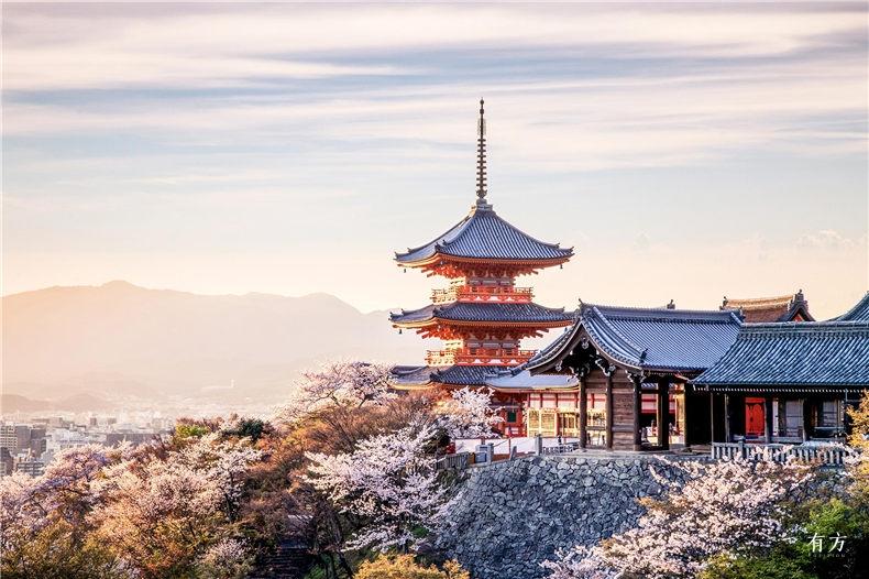 0日本赏樱必住酒店27